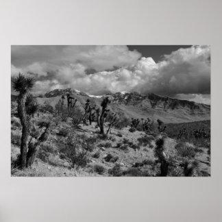 Yucas con los picos nevados, desierto de Mojave UT Póster
