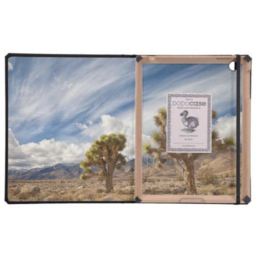 Yucas en desierto iPad cobertura