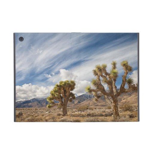 Yucas en desierto iPad mini fundas