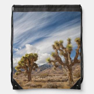 Yucas en desierto mochila