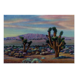 Yucas y desierto de Las Vegas Nevada Póster