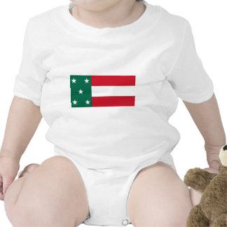 Yucatan Flag Tshirts
