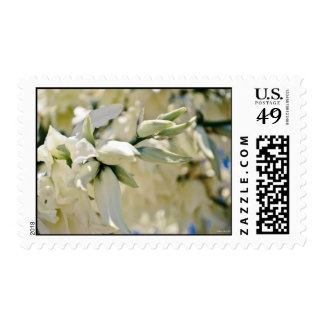 """""""Yucca Blooms"""" Stamps"""