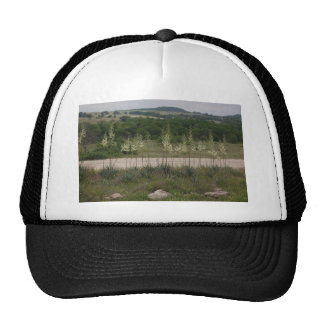 Yucca Blossoms. Trucker Hat