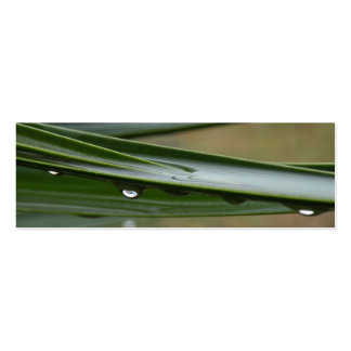 Yucca Dew Bookmark Double-Sided Mini Business Cards (Pack Of 20)