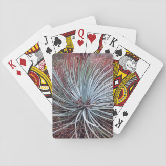 Yucca in the Desert Playing Cards