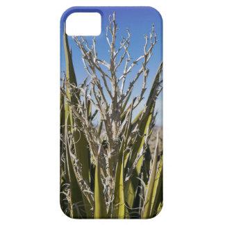 Yucca Plant iPhone SE/5/5s Case