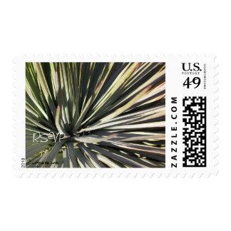 Yucca Radial RSVP Wedding Custom Stamp