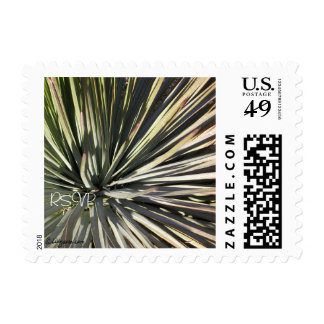 Yucca Radial RSVP Wedding Small Postage Stamps