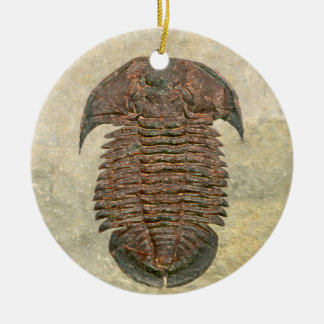 Yuepinquia Fossil Trilobite Christmas Ornament