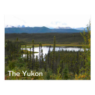 Yukon Pond Postcard