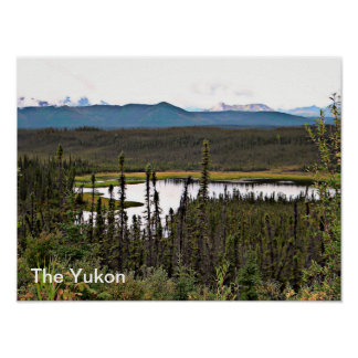 Yukon Pond Poster