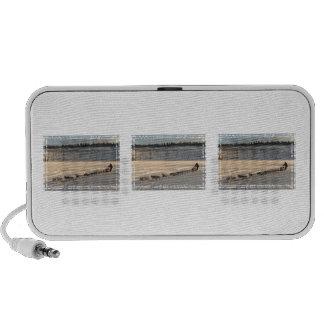 Yukon Quest 2011 Speaker System