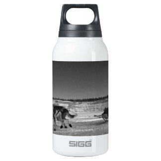 Yukon Quest Close-Up; No Text Insulated Water Bottle