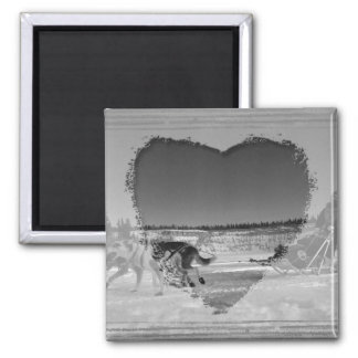 Yukon Quest Close-Up; No Text 2 Inch Square Magnet