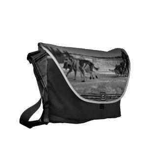 Yukon Quest Close-Up; No Text Courier Bag