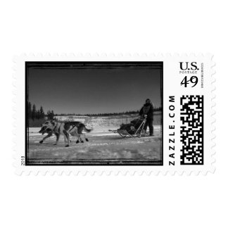 Yukon Quest Close-Up; No Text Postage Stamps