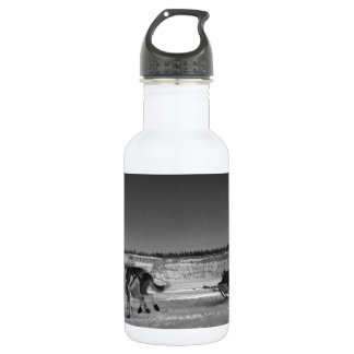 Yukon Quest Close-Up; No Text Stainless Steel Water Bottle