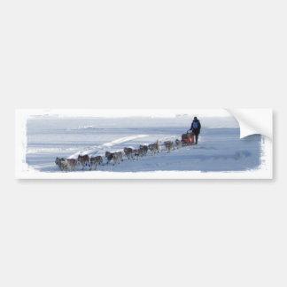 Yukon Quest Team Bumper Sticker