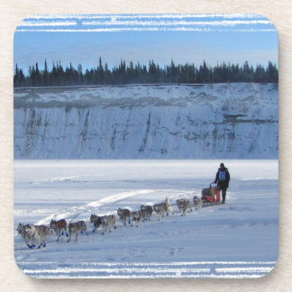 Yukon Quest Team Coaster