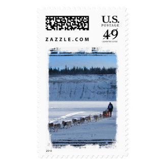 Yukon Quest Team Postage Stamps