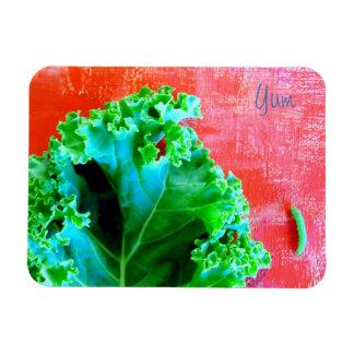 Yum Healthy Food Magnet