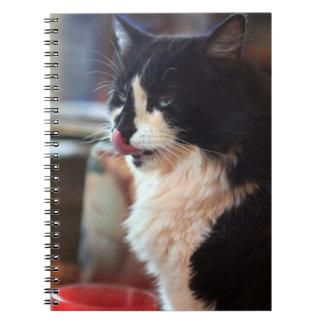 Yum! Tasty Kitty Treats! Notebook