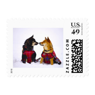 Yumi and Miya playing in the snow Postage