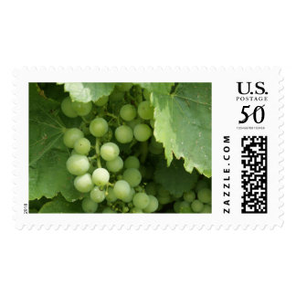 YUMM! Grapes. Postage