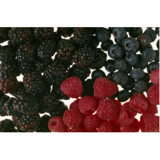 Yummy Berries Cut Outs