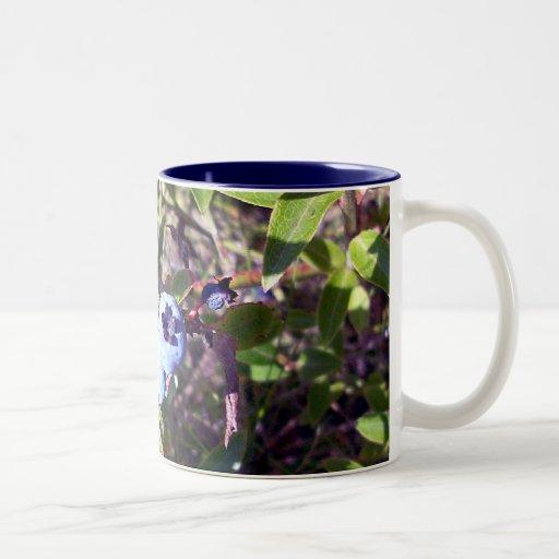 Yummy Blueberries Mugs