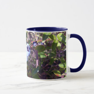 Yummy Blueberries Mug