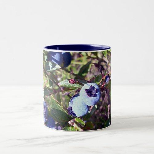Yummy Blueberries Two-Tone Coffee Mug