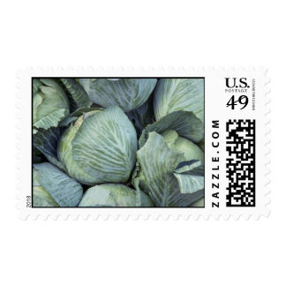 Yummy Cabbage Stamps