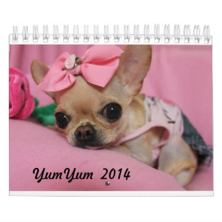 YumYum 2014 Calendar