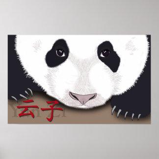yun zi panda cub poster