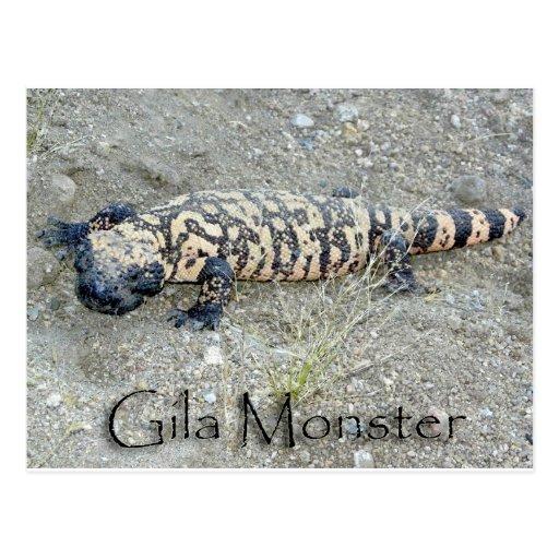 """""""Yute"""" el monstruo del Gila en el congreso, Arizon Tarjeta Postal"""
