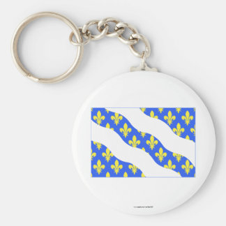 Yvelines flag keychain