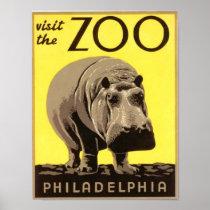 Z00 - Hippo Poster