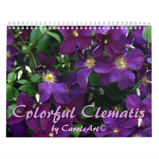 Z Colorful Clematis 2013 Calendars