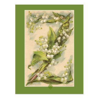 Z Flower Alphabet Lily of the Valley Postcard