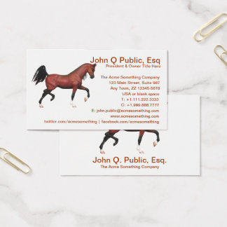 Z Horse Farm Riding School Pony Club Business Card