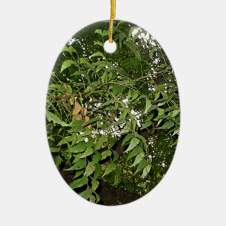 Z Neem Design Ceramic Ornament