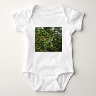 Z Neem Design Infant Creeper