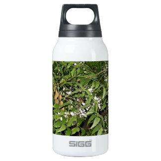 Z Neem Design Thermos Water Bottle
