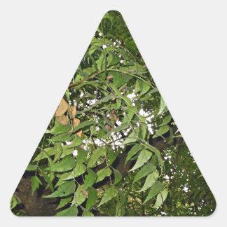 Z Neem Design Triangle Sticker