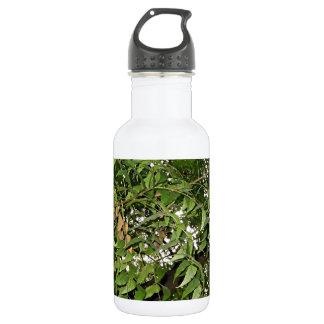 Z Neem Design Water Bottle