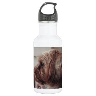 Zac Stainless Steel Water Bottle