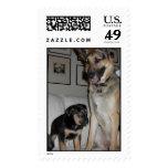 Zach & Zorro Postage Stamps