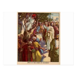 Zacheus sees Jesus Postcard